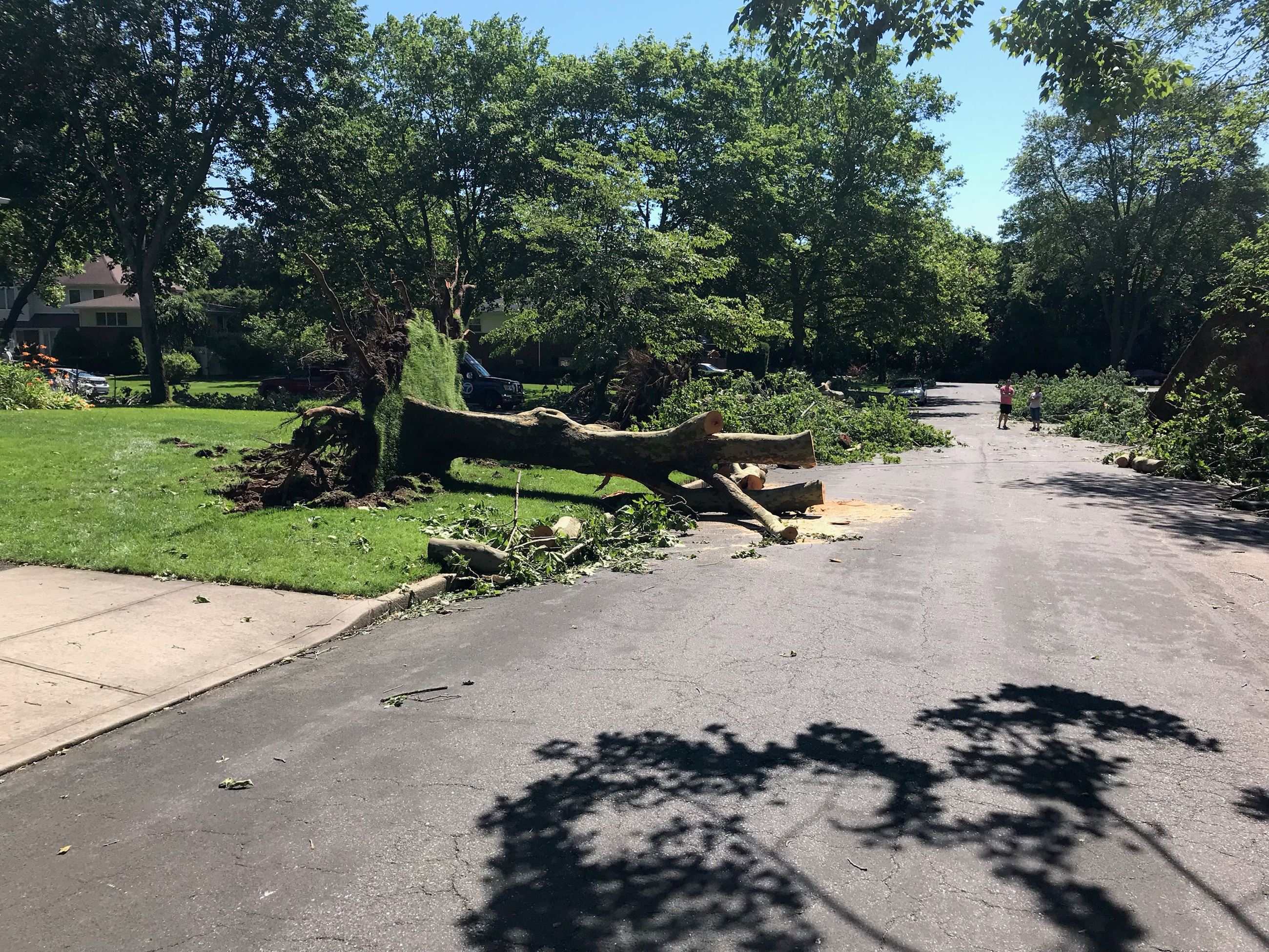 July Storm Damage